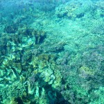 Indonésie - Lombok - 260