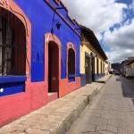 Mexique - San Cristobal de la Casas - 025