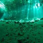 Mexique - On a plongé dans les cénotes !