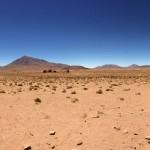 Bolivie - Lagunas Jour 2 - 0424