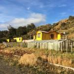 Chili - Punta Arenas - 107