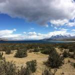 Chili - Toerres Del Paine - 0168