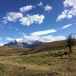 Chili - Toerres Del Paine - 0224