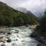 Chili - Toerres Del Paine - 0439