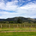 Australie - Hunter Valley