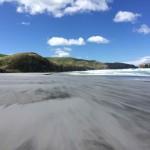 Nouvelle-Zélande - Dunedin & la péninsule d'Otago
