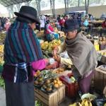 Equateur - 5 fruits inconnus